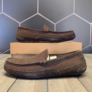 New W/ Box! Mens UGG Alder Wool Brown Mocassin